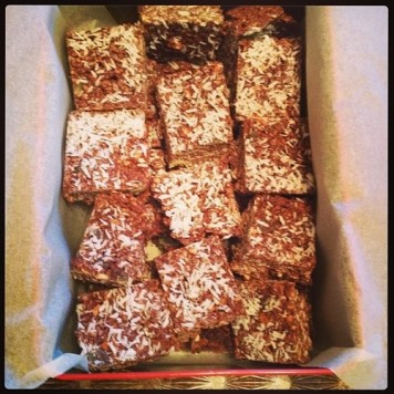 coconut chocolate protein bars