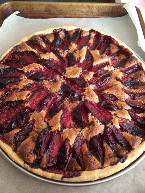 plum bakewell